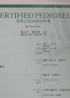 4.jfif